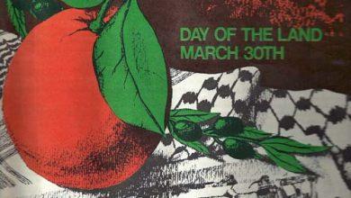 PFLP Bulletin4 1981 PPPA